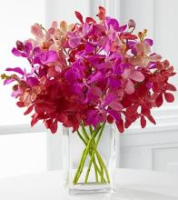 Tickled Pink Mother\'s Day Orchid Bouquet