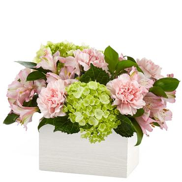 FTD Sweet Charm Flowers
