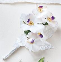 White on White? Corsage