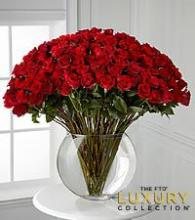 Rose Abundance 100 Long Stem Roses