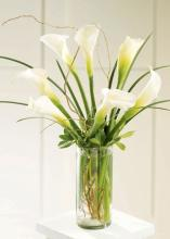 Simple Sophistication? Arrangement