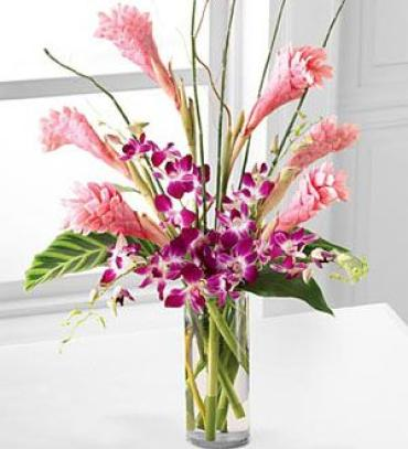 Tropicala Arrangement