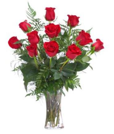 Red Roses Vased