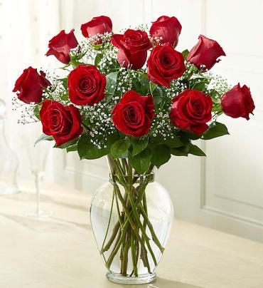 Red Rose Elegance Premium Long Stem Red Roses