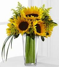 The Sunshine Daydream Sunflower Bouquet